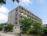 鉄筋コンクリート造5階建ての賃貸マンション!